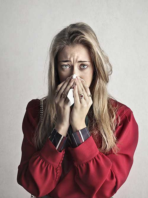 Junk removal company reduces allergens